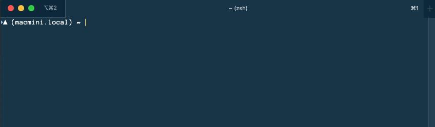 2020-01-21_11_10_40_zeit_terminal.png